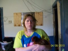my pet chicken red