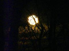 Friday Full Moon