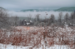 Snowy Foggy Morning in Wellsboro PA!!!