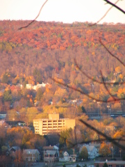 Fall colors at sunset