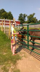 Horsing Around At Animal Adventure