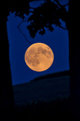 Country Style Super Moon!