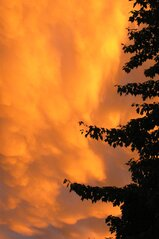 Sky Afire After the Storm