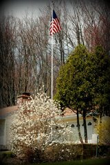 Old Glory flying over spring blossoms