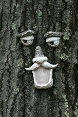 Beware the trees, they are watching you