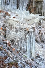 Nature's Ice Sculptures!
