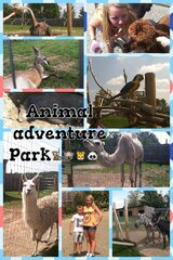 Animal Adventure Family fun
