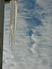 Icicles of a different kind