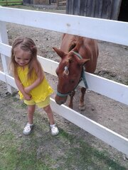 Nevaeh getting a kiss from a pony