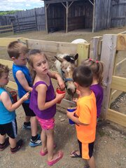 Fun time feeding the animals!!