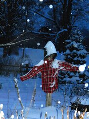 Remember Winter? Scarecrow Does!