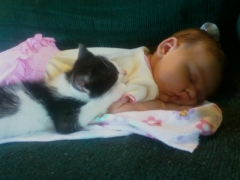Baby and Kitten take a Snooze together