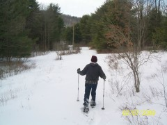 Using snow shoes