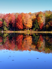 Splendid Fall Reflection!