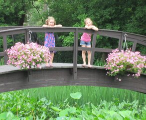 Tioga Gardens: All Things Flora