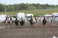 BC 4H Horse Drill Teams Sweep StateFair