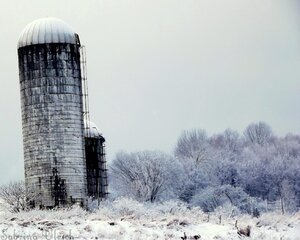 Lonely Winter Silos