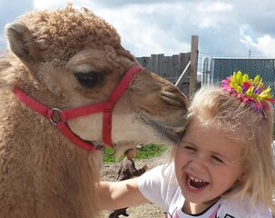 Camel Kisses