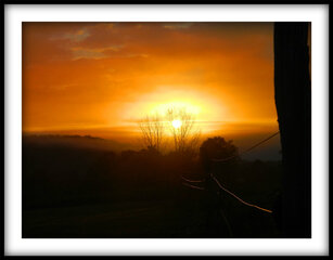 Fence Line Sunrise