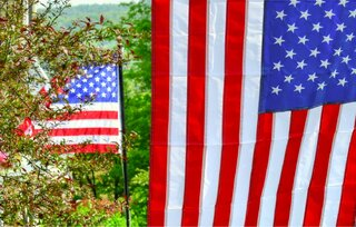Search for Red, White and Blue