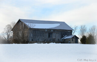 Rte 12 Barn near Utica