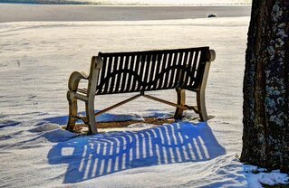 Winter Shadows!