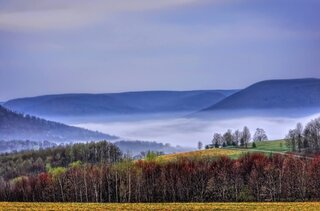 Foggy Sunrise in Tioga County, PA!