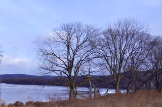 A Frosty Susquehanna River