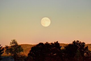 Don't miss the Harvest moon!