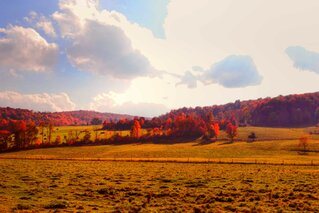 Fall in Apalachin, NY