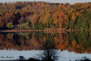 Fall foliage reflections on a lake