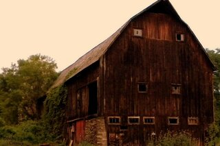 Majestic Barn
