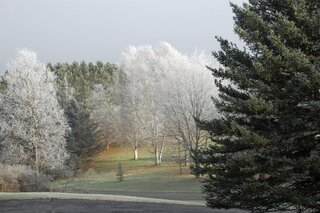 A frosty morning in Otego, NY