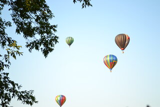 Speedie Fest & Balloon Rally 2013