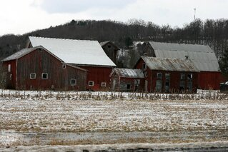 Random Newark Valley Barns