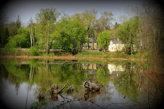 Reflections on Owego's Brickpond
