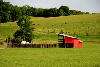 Randon Barns from Town of Owego, NY