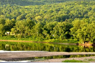 Reflection on the Susquehanna