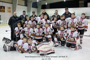 Squirt B Jr. Sens Win Bronze Medal