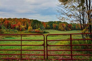 Red Fall Fence!