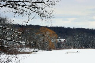 New snow at Owego's Brickpond Wetland