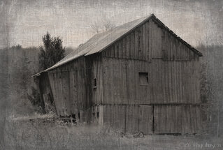 Pitcher Springs barn
