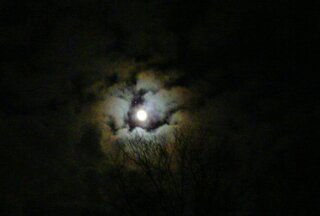 Full Moon & Jupiter 11/28/12