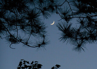 Last Night's Crescent Moon