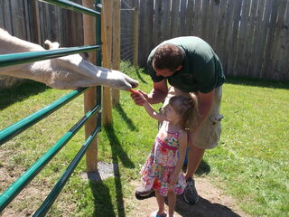 Afternoon at Animal Adventure