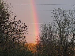 An unexpected Evening Rainbow