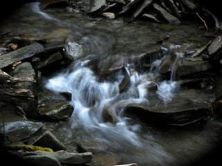 Swirling Creek Waters