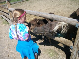 Miley, feeding the ponies
