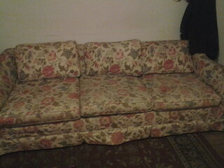 ugly couch 2013.