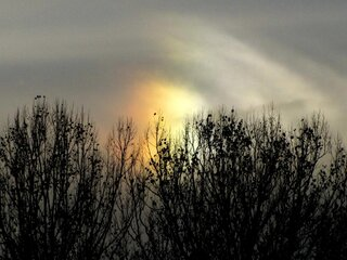 My best Sundog of 2012
